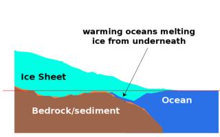 WAIS diagram