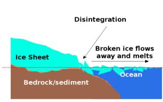 WAIS diagram disintegration