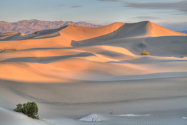 Death Valley mesquite dunes by ccho flickr